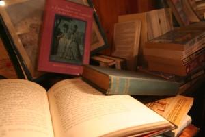 sceal eile books (23)